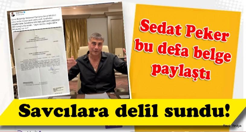 Sedat Peker , Savcılara delil sundu